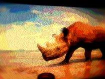 rhino play ground
