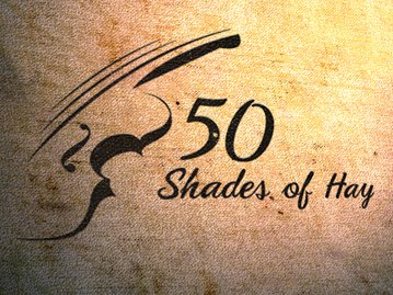 Image for 50 Shades of Hay