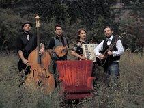 The Armadillos