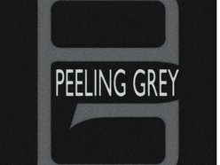 Image for PEELING GREY