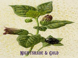 Image for Nightshade and Gold