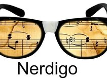 Nerdigo