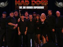 Mad Dogs • The Joe Cocker Experience