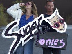 Sugar Ponies