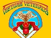 The Vietnam Veterans
