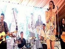 Damien Cripps Band