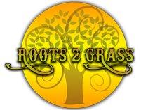 Roots 2 Grass