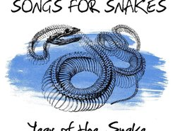 Image for Songs For Snakes