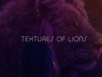 Textures Of Lions