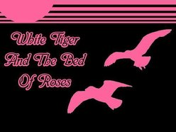 Image for White Tiger and the Bed of Roses