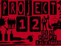 Project12