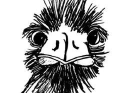 Image for Bad Bird