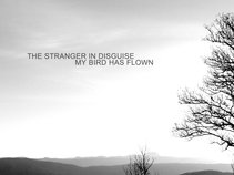 The Stranger In Disguise