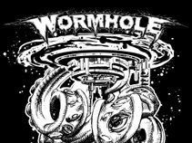 Project: Wormhole