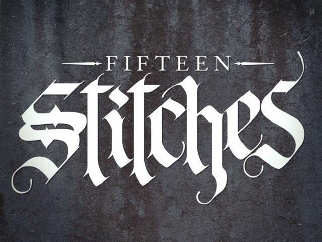 Image for Fifteen Stitches