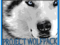 Project Wolfpack