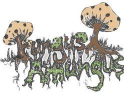 Image for FUNGUS AMUNGUS