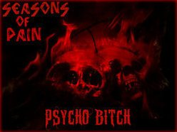 Image for SEASONS OF PAIN
