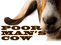Image for Poor Man's Cow