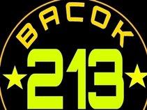 213 BACOK GANK