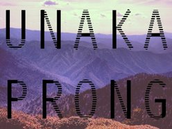Image for Unaka Prong