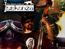 The Steam Cats of Sekonza