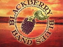 The Blackberry Blues Band