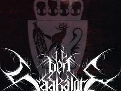 Image for Den Saakaldte