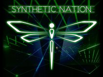 Synthetic Nation