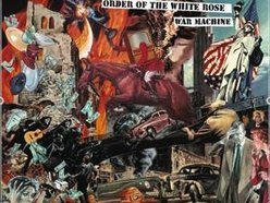 Image for Order of the White Rose