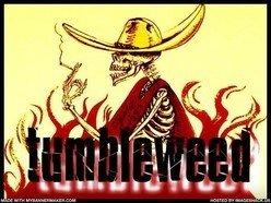 Image for TUMBLEWEED