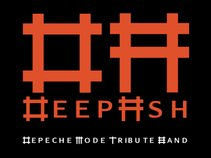Deep Ash (Depeche Mode tribute)