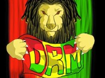 Dinasty Reggae Music