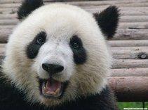 happypanda