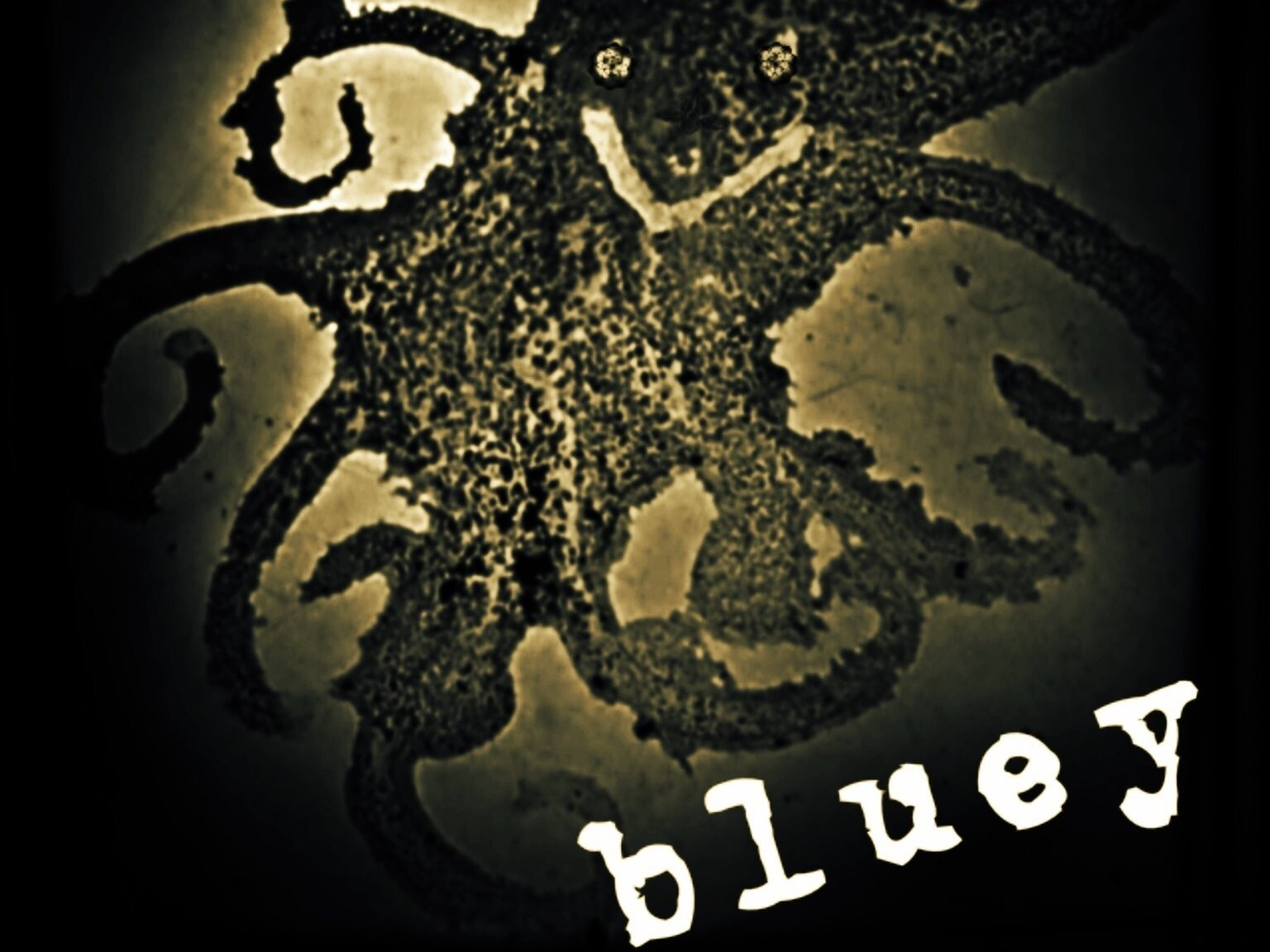 Image for Bluey