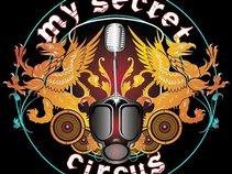 MY SECRET CIRCUS