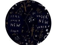 Under New Order