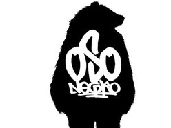 Image for oso negro