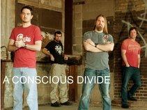 A Conscious Divide