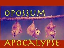 Opossum Apocalypse