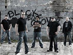 Image for Black Leaf Clover