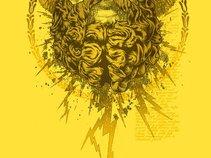 Great Zeus' Beard