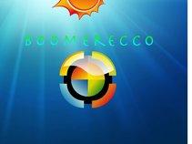 BoomerEcco