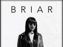 BriarLunar