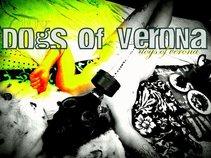 Dogs of Verona
