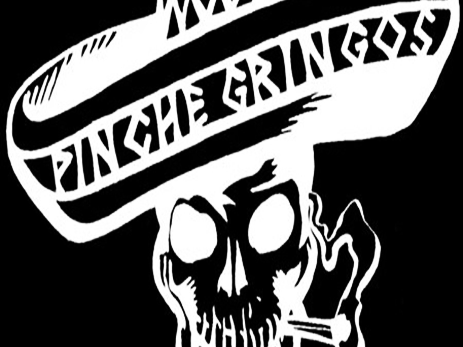 Image for PINCHE GRINGOS