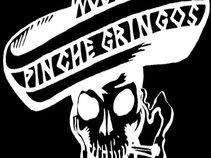 PINCHE GRINGOS