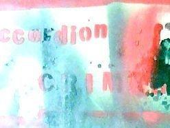 Image for Accordion Crimes