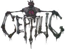 Cephlic