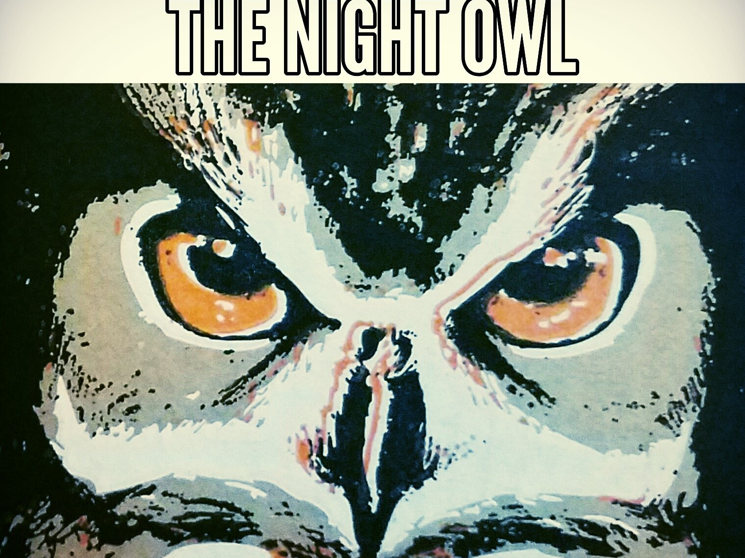 Image for The Night Owl Collective